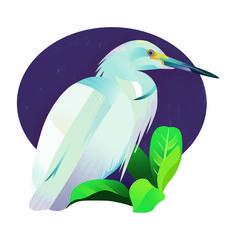 Crane bird illustration by Jasmijn Solange Evans Bird Illustration, Illustrations, Crane Bird, Evans, Illustration, Illustrators