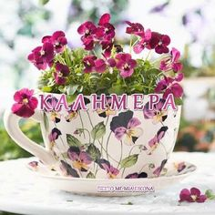 Εικόνες για καληνύχτα με λόγια -Η ψυχή μου σ ένα στίχο- Good Morning Wednesday, Good Morning Quotes, Night Pictures, Night Photos, Meaningful Quotes, Tea Cups, Planter Pots, Tableware, Afrikaans