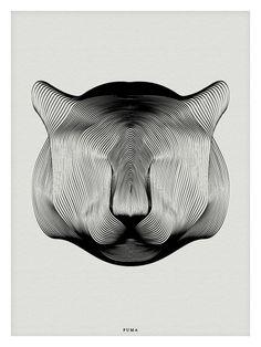Puma by Andrea Minini