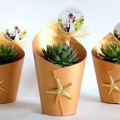 Ideas For Wedding Favors Succulent Cactus Succulent Wedding Favors, Succulent Gifts, Diy Wedding Favors, Wedding Gifts, Wedding Flowers, Wedding Invitations, Wedding Dresses, Cactus Flower, Planting Succulents