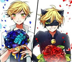 Miraculous Ladybug, Adrien and Chat Noir