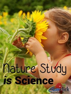 Nature Study is Science