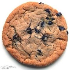Wanna scare someone for Halloween? When your cookies are done use a tooth pick and drag the chocolate chips out a little to make little spiders!!... DIY