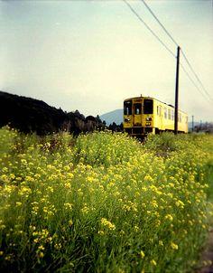 little yellow train.