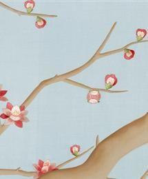 plum blossom - tiliqua