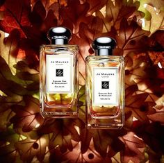 "96 Likes, 2 Comments - Gift Guide Gurus (@goldengiftguide) on Instagram: ""Jo Malone brand new spellbinding scents. English Oak and English Oak & Hazelnut . . . Jo Malone…"""