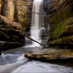 The Little Grand Canyon. Can't wait to go hiking here again! In Southern IL.