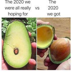 Psychology Memes, Best Memes Ever, Starting Keto Diet, Expectation Vs Reality, Bons Plans, Morning Humor, Sports Nutrition, Nutrition Guide, How To Make Light