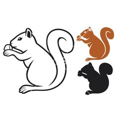 Squirrel with hazelnut vector art - Download Hazelnut vectors ...