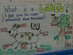 Writing Workshop Kindergarten Anchor Charts   Kreative in Kinder: Writer's Workshop Labeling!