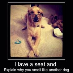 Hahahaha...true..my dog sniffs me every time I leave or enter the room...its funny and cute..