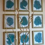 Sea Fan Gallery Wall