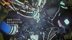 8.31 다이빙벨 해외판 무상 공개