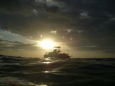 のどかなハワイ。~ハワイ島(アメリカ)~ hawaii15