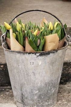 Bucket of tulips to use as bridal shower favors.  See more bridal shower favor ideas at www.one-stop-party-ideas.com