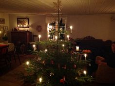 Christmas tree at Torpabo 2013