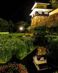 いいね!214件、コメント11件 ― Kikuo Higasi(@kikuo1959)のInstagramアカウント: 「大村公園ライトアップ ・ 📷 2018.6.1 フォロワーさんから誘って頂き昨夜行ってみました。 @kento1960 さん @minorin2111 さん お疲れ様でした🤗…」 Shiro, Vineyard, Castle, Mansions, House Styles, Outdoor, Instagram, Home Decor, Outdoors