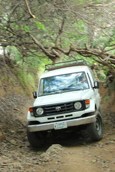 Driving in the 4x4 with greenpathways.com to Telica Volcano