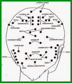 Head Massage Points