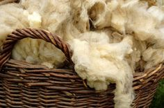 Turning Fiber into Yarn: The Art of Spinning (for your NEVER gonna happen sheep farm! Spinning Wool, Hand Spinning, Spinning Wheels, Babydoll Sheep, Off The Grid News, Just In Case, Just For You, Wooly Bully, Needle Felted
