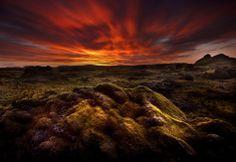Moss morning at Laki, Iceland Photo by samuel FERON
