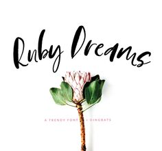 Ruby Dreams Font + Dingbats – Birdesign