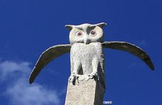 The Owl House, Nieu Bethesda, South Africa: The Owl House: Owls Funny Owls, South African Art, Art Sites, Owl House, Visionary Art, Outsider Art, French Artists, Fantasy World, Cat Memes