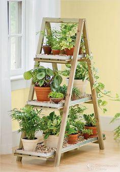 Этажерка для цветов: помогаем растительности