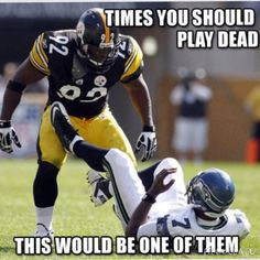 James Harrison is out of a job. And the Steelers are better for it. James Harrison played for the Steelers for a decade. And the Steelers are better for it. Steelers Pics, Here We Go Steelers, Pittsburgh Steelers Football, Pittsburgh Sports, Best Football Team, Football Memes, Steelers Stuff, Dallas Cowboys, Football Baby