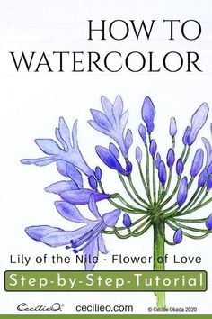 Step-by-step watercolor flower tutorial. Download free line art PDF. Learn to paint beautiful violet shades and retouch with colored pencils. #watercolortutorial #watercolorflowers #watercolor #watercolour Watercolor Paintings For Beginners, Watercolor Tips, Watercolor Techniques, Floral Watercolor, Watercolour Pencil Art, Learn Watercolor Painting, Watercolor Beginner, Peony Painting, Watercolor Lettering
