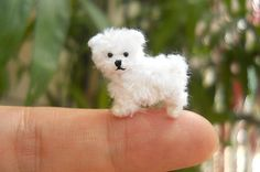 Maltese Puppy - Tiny Crochet Miniature Dog Stuffed Animals - Made To Order - Account Suspended Langeloh Filztiere Maltese Puppy - Tiny Crochet Miniature Dog Stuffe Needle Felted Animals, Felt Animals, Crochet Animals, Crochet Toys, Cute Animals, Pom Pom Animals, Small Animals, Pipe Cleaner Animals, Crochet Monkey