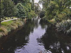 Botanical Garden, Christchurch, New Zealand Botanical Gardens, New Zealand, Princess, Pictures, Photography, Instagram, Photos, Photograph, Fotografie