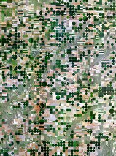 Print Description  This Overview captures the pivot irrigation fields that cover the landscape  of the land surrounding Edson, Kansas, USA. The circles that you see are  created when lines of sprinklers that are powered by electric  motors, rotate 360 degrees to evenly irrigate crops.    Sh