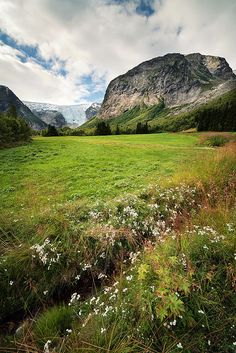 Jostedalsbreen National Park, Norway  lσvє ♥ #bluedivagal, bluedivadesigns.wordpress.com