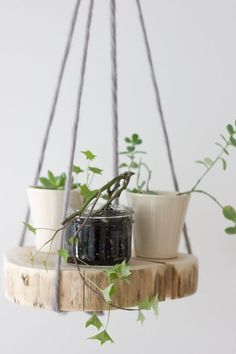 DIY wood slab shelf plant hanger