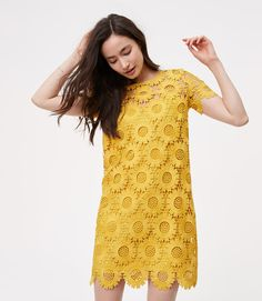 Primary Image of Petite Sunflower Lace Dress
