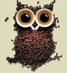 Google Image Result for http://1.cdn.tapcdn.com/images/thumbs/taps/2012/07/coffee-owl-meme-lol-humor-funny-pictures-funny-photos-funny-2b3eb3ae-sz624x678-animate.jpg