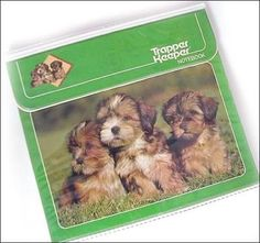 Trapper Keeper, THE BEST ORGANIZER TOOL EVER!  I remember driving my family crazy trying to figure out which picture I HAD TO HAVE. :)