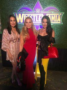Brie Bella, Natalya, and Nikki Bella