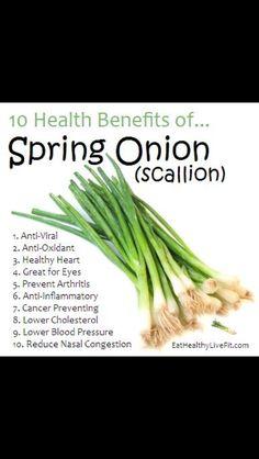 Health Benefits of Spring Onions/Scallions. [{I call them Green Onions myself}].