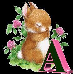 Alfabeto animado de conejito con flores, abriendo y cerrando los ojos. | Oh my Alfabetos!