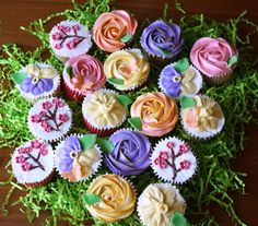 Spring Garden Cupcakes - Cupcake Novelties - Gourmet Cupcakes, Cake Pops, Cookies & Cakes, Edible Cupcake Arrangements, Cupcake Bouquets, Cupcake Gifts & Edible Image Cupcakes for all occasions!