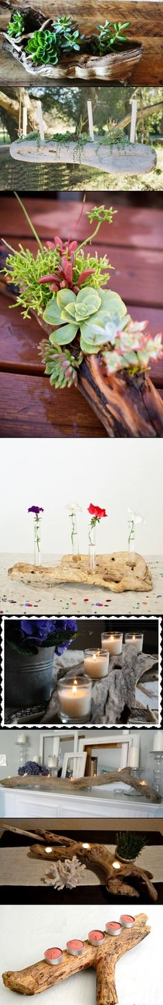 DIY Driftwood Centerpieces ideas for Decorating Lovely look for anyone's table. Garden Art, Garden Plants, Home And Garden, Garden Ideas, Cacti And Succulents, Planting Succulents, Air Plants, Indoor Plants, Outdoor Spaces