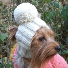 PATTERN Dog Hat Dog Hat Dog PATTERN Dog Clothes Hat