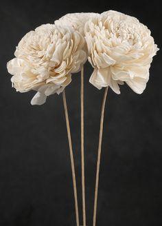 tapioca wood flowers that look kind of like peonies - 4 for $6