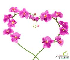 Flora for #skin – use #orchid for #hydration ! Turns out orchids can do a lot more than just make #bouquets look #pretty - find out what -  https://www.facebook.com/214726681925965/photos/a.216938541704779.54766.214726681925965/892073210857972/?type=1&theater