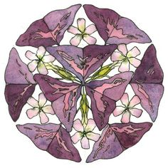 th17-cwm17-oxalis-triangularis-purple-nature-mandala-17-ink-watercolor-streetsmartgeometry-chris-carter-artist-022214-600web.jpg 600×601 pixels