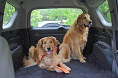For comfort, for durability, for clean car and a fun filled road trip with your pooch.