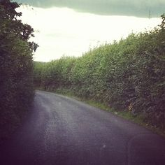 A random, narrow, 2 lane road in the County of Kent.