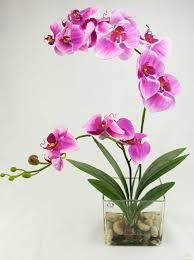 Guardado por Melba Mateus - My site Orchid Flower Arrangements, Orchid Centerpieces, Artificial Floral Arrangements, Artificial Orchids, Orchid Plants, Silk Orchids, Dendrobium Orchids, Exotic Flowers, Beautiful Flowers